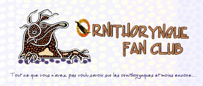 L'ornithorynque périgourdin | Ornithoryqnue Fan Club