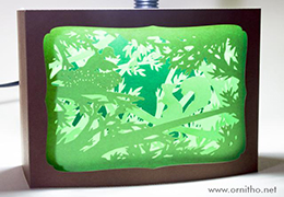 L'Ornithorynque périgourdin - Carte postale 3D - Découpe laser - l'écureuil en lumière