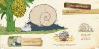 L'ornithorynque périgourdin | Livres – Le bestiaire loufoque 02